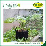 Onlylife PE 고품질 편리한 정원 재배자 야채는 부대를 증가한다