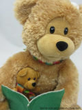 Conversa da história que fala o urso dizendo bonito