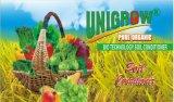 Condicionador do solo de Unigrow para a plantação do arroz e do tomate