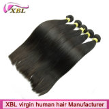 Extensions brésiliennes de cheveux humains de la Vierge 100 de Remy