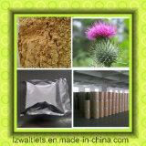 ミルクThistle ExtractかPlant Extract Silymarin/Silibinin