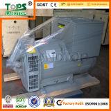 상단 STF 시리즈 250kVA 사본 Stamford 발전기 가격 중국제