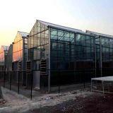 Serra intelligente commerciale di vetro della Multi-Portata