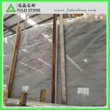 カラーラの新しい白い大理石の平板