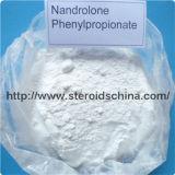 증진 Nandrolone Phenylpropionate 남성 Steriod 분말 처리되지 않는 호르몬 62-90-8