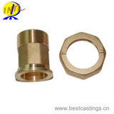 Carcaça de bronze personalizada OEM da alta qualidade