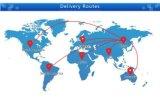 Faixa Singapore de Vape do silicone/frete mar de Malaysia/Germany/USA/UK LCL/FCL
