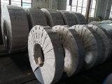 De koudgewalste Rol van het Roestvrij staal (430)