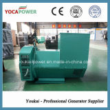 220kw Yuchai Green Pure Copper Brushless Alternator di Highquality