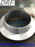 Flange do GOST (flange de GOST12821 WN)