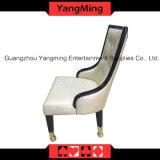 Европейские кожаный стулы (YM-DK05)
