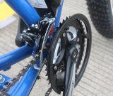 2017の脂肪タイヤの大人のための電気マウンテンバイクのEバイク