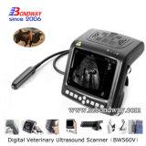 Scanner vétérinaire de Doppler de couleur d'ultrason de produits