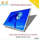13.3inch는 Acer S5-391 V3-371g 휴대용 퍼스널 컴퓨터를 위한 유형 30pin Edp 광택 있는 LCD 스크린 B133xtn01.6를 체중을 줄인다