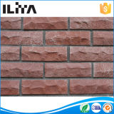 건축재료 시멘트 벽돌 인공적인 벽돌 (YLD-12010)