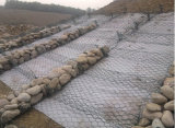 Casella di Gabion/maglia di Gabion/casella saldata di Gabion/Gabion (fabbrica diretta)