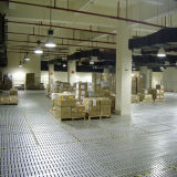 Plataforma de la estructura de acero del almacenaje del almacén