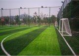 L'erba di gioco del calcio, erba artificiale, mette in mostra l'erba