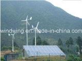 주거 600W (100W-20kw)를 위한 독립적인 바람 에너지 발전기