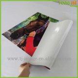 Papier auto-adhésif de collant de film de guichet de compagnie de fabrication