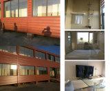 Projeto do apartamento da casa do recipiente de Luxuary