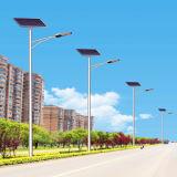 indicatore luminoso di via solare di 6m 30W LED (JINSHANG SOLARI)