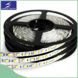 Indicatore luminoso di striscia flessibile di DC12V SMD5050 LED