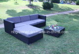 Plastic rotin tressé Furniture Canapé d'extérieur