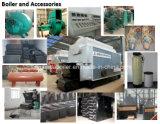 Chaudière à vapeur allumée par charbon à chaînes automatique de grille de Dzl de prix usine