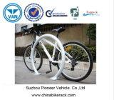 Zwei Fahrrad-Kapazitäts-Metallfahrrad-Zahnstange