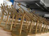 Effet de miroir de couleur d'or de qualité supérieur ou crémaillère en acier balayée de chaussure de métier en métal