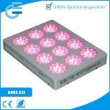 400W 실내 가득 차있는 스펙트럼 LED를 증가하는 의학 플랜트는 위원회를 증가한다