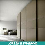 Nuovo armadio del guardaroba dei portelli scorrevoli di disegno di prezzi favorevoli (AIS-W195)