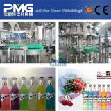 Machine de remplissage carbonatée automatique de boisson non alcoolique de bouteille en verre