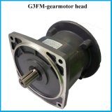 Flangia Gearedmotor del motore di IEC G3