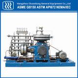 Промышленный компрессор природного газа CNG