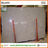 Natürliches Brasilien Giallo Sf Real Granite für Countertops/Tiles