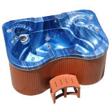 Mini Jacuzzi connosco bombas do sistema e da massagem do balboa