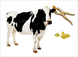 Gutes Quality TPU Animal Tag/RFID Animal Ear Tag für Animal Management
