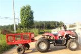 Playa ATV 125cc coche eléctrico para animales de granja