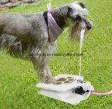 Fontana bevente della macchina dell'acqua dell'animale domestico della fontana del cane