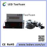 Diodo emissor de luz UV que cura a lâmpada 395nm 300W