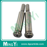 Le perforateur Piercing de précision pour le moulage partie (UDSI022)