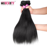 Cabelo reto brasileiro de baixo preço de cabelo humano do Virgin de Msbeauty