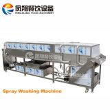 Equipo que se lava de la pera de Apple, máquina de la limpieza de la fruta