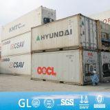 Nahrungsmittelvorratsbehälter Afrika-Angola Nigeria 20FT 40FT