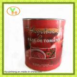 Fabricante enlatado molho da pasta de tomate do tomate