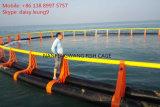 嵐Dの波は深海の養魚場のケージに抵抗する