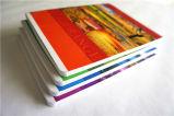 Bladen van het Notitieboekje van de Levering van de School van de Prijs van de fabriek de Lege In het groot 200