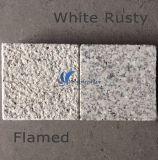 G603/654/G664/Rusty de Grijze Zwarte Gele Witte Natuurlijke Plak van het Marmer/van het Graniet